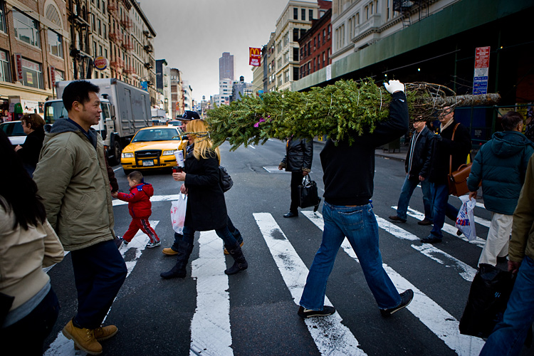 Christmas Tree on Canal St : China Town : New York City
