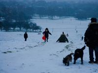 Snow On Primrose Hill : London : UK