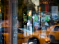 Diner On the Edge of America Workshop : Phone Taxi Glass :  Jez Coulson : NYC