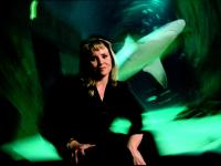 Lisa Jane Stratton Woman Leader in a World of Sharks : London Aquarium : UK